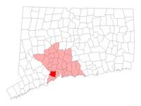 Orange CT map